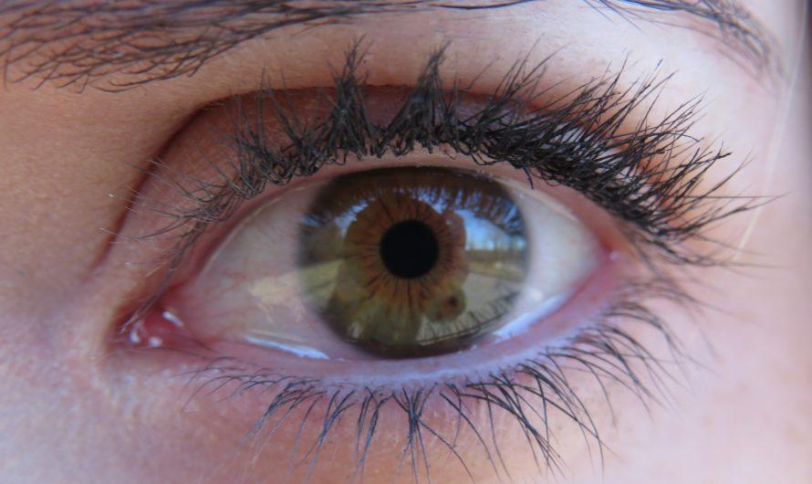 Alles rund ums Auge: Augenbrauen färben: 8 €  Augenbrauen zupfen: 5 € Wimpern färben: 8 €